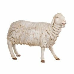 Picture of Standing Sheep cm 180 (70 Inch) Fontanini Nativity Statue for Outdoor use, hand painted Resin