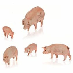 Picture of 5 Pigs Set cm 10 (3,9 inch) Landi Moranduzzo Nativity Scene plastic (PVC) in Arabic or Neapolitan style