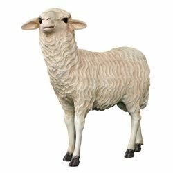 Picture of Standing Sheep cm 65 (25,6 inch) Landi Moranduzzo Nativity Scene in fiberglass, Arabic style