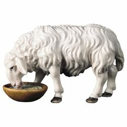 Picture of Sheep drinking cm 12 (4,7 inch) Hand Painted Shepherd Nativity Scene classic Val Gardena wooden Statue peasant style