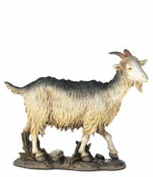 Picture of Goat cm 20 (7,9 inch) Landi Moranduzzo Nativity Scene resin Statue Arabic style