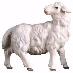 Picture of Sheep looking backwards cm 15 (5,9 inch) hand painted Ulrich Nativity Scene Val Gardena wooden Statue baroque style