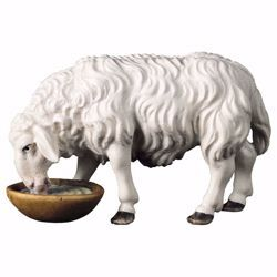 Picture of Sheep drinking cm 50 (19,7 inch) hand painted Ulrich Nativity Scene Val Gardena wooden Statue baroque style