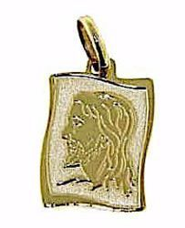 Picture of Holy Face of Jesus Rectangular Medal Pendant gr 1,2 Yellow Gold 9k for Man
