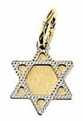 Picture of 6-pointed Star of David Shield Small Pendant gr 0,75 Bicolour yellow white Gold 18k Unisex Woman Man