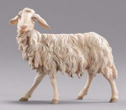 Picture of Sheep looking leftwards cm 55 (21,7 inch) Hannah Alpin dressed Nativity Scene in Val Gardena wood
