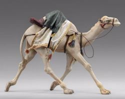 Picture of Camel running cm 40 (15,7 inch) Immanuel dressed Nativity Scene oriental style Val Gardena wood statue