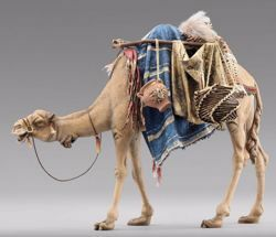 Picture of Camel with saddle cm 40 (15,7 inch) Immanuel dressed Nativity Scene oriental style Val Gardena wood statue