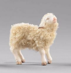 Picture of Lamb with wool cm 40 (15,7 inch) Hannah Alpint dressed Nativity Scene in Val Gardena wood