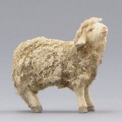 Picture of Lamb standing cm 14 (5,5 inch) Immanuel dressed Nativity Scene oriental style Val Gardena wood statue