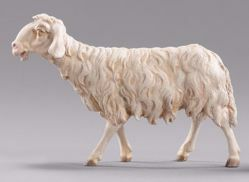 Picture of Sheep walking cm 14 (5,5 inch) Immanuel dressed Nativity Scene oriental style Val Gardena wood statue