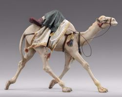 Picture of Camel running cm 30 (11,8 inch) Immanuel dressed Nativity Scene oriental style Val Gardena wood statue