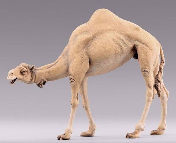 Imagen de Camello cabeza baja cm 10 (3,9 inch) Belén para vestir Homobono de madera y cobre