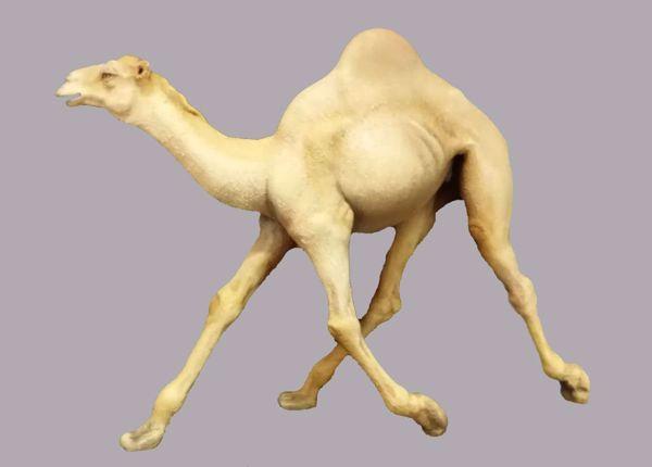 Imagen de Camello que corre cm 14 (5,5 inch) Belén para vestir Homobono de madera y cobre