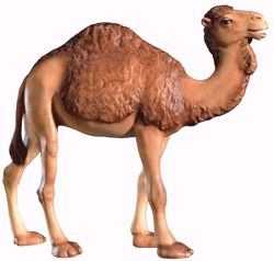 Imagen de Camello cm 8 (3,1 inch) Belén Leonardo estilo tradicional árabe colores al óleo en madera Val Gardena