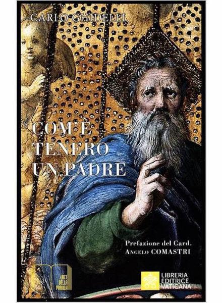 Picture of Come è Tenero un Padre verso i Figli. L'icona della tenerezza nella Bibbia