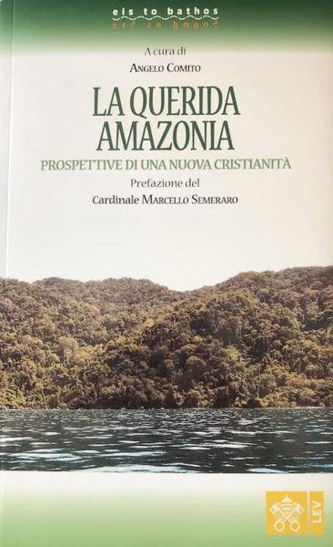 Imagen de La Querida Amazonia. Prospettiva di una nuova Cristianità Angelo Comito