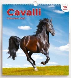 Picture of Horses 2022 wall Calendar cm 31x33 (12,2x13 in)