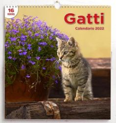 Picture of Cats 2022 wall Calendar cm 31x33 (12,2x13 in)